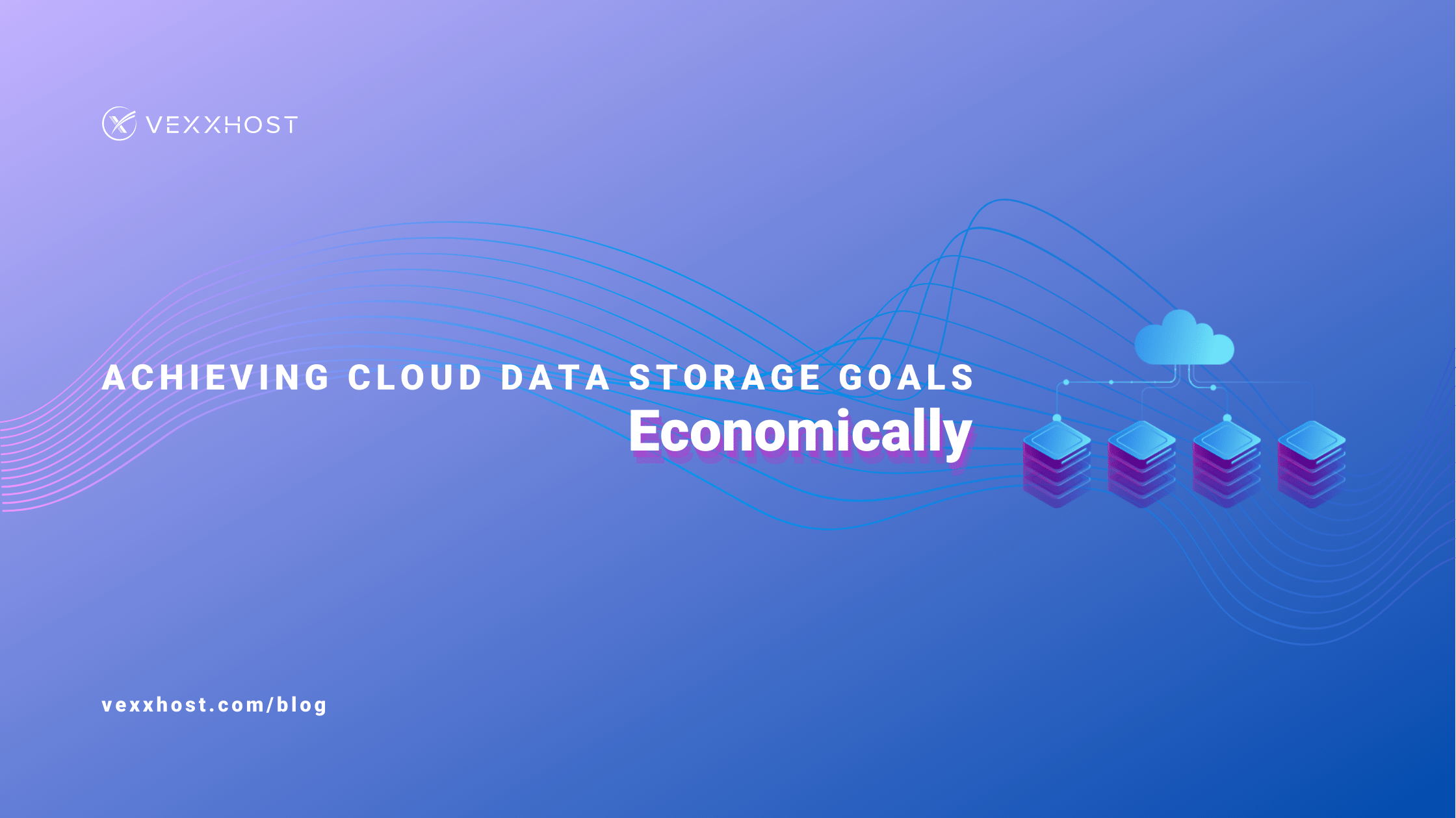 Achieving Cloud Data Storage Goals Economically