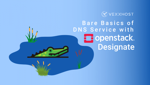 Bare Basics of DNS Service with OpenStack Designate